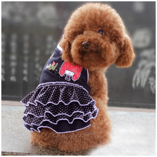 Shop Dog Gear Polka Dot Skirt Dress for Pet Clothes & Apparel Store SIZE 12-Color Colorful Dots